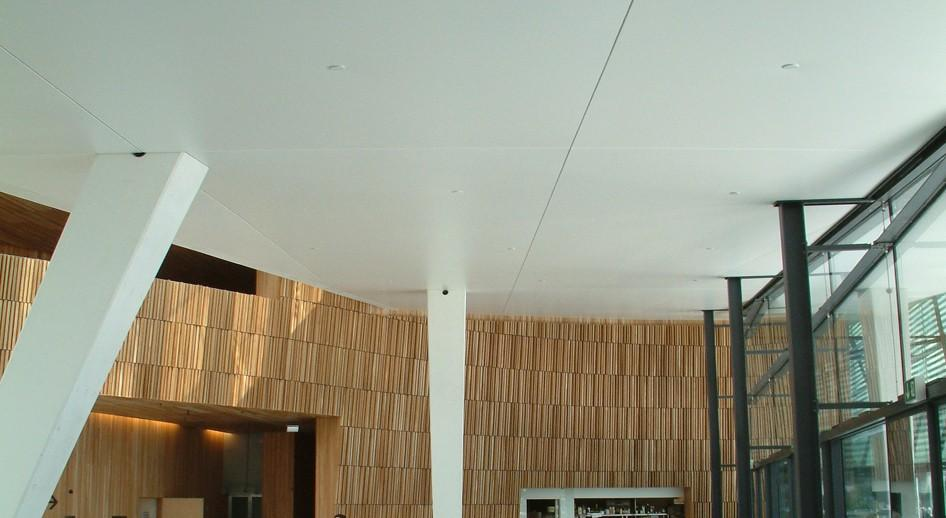 stretch-suspended-bar-restaurant-ceiling-image-4